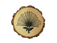 Living & Giving Tree Slice Pohutukawa Trivet Round 16cm