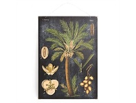 Living & Giving Palm Tree Vintage Board 50x70cm