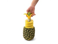 Living & Giving Joie Blossom Pineapple Corer & Slicer