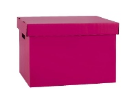 Officeworks Marbig Coloured Archive Box Berry