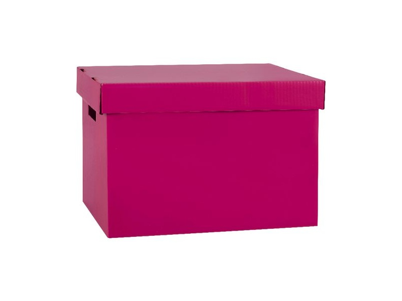 Marbig Coloured Archive Box Berry