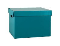 Officeworks Marbig Coloured Archive Box Teal