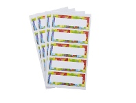 Officeworks Geometric Rectangle Label 70 x 24mm 25 Pack