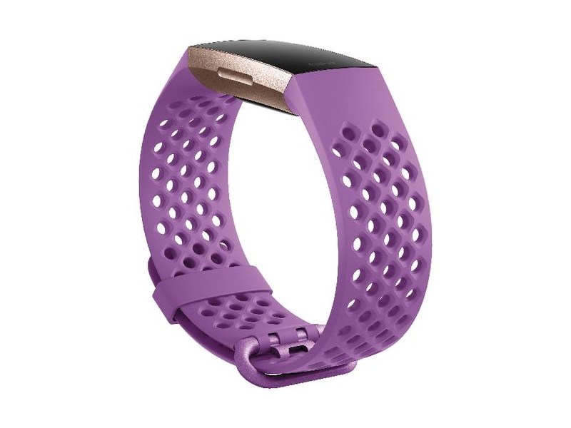 Fitbit Charge 4 Sport Band Large Berry