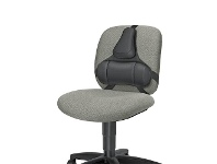 Officeworks Fellowes Professional Back Support