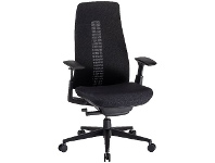 Officeworks Haworth Fern Ergonomic Chair Black