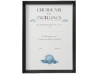 Officeworks Lifestyle Brands Certificate Frame A3 Black/Silver