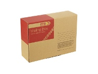 Officeworks PPS Mailing Box 310 x 225 x 102mm