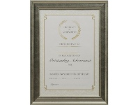 Officeworks Lifestyle Brands A4 Certificate Frame Gold