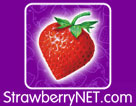 Image Of StrawberryNET.com